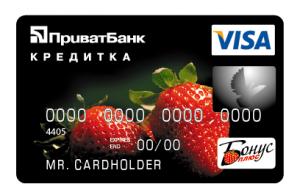 Visa_4